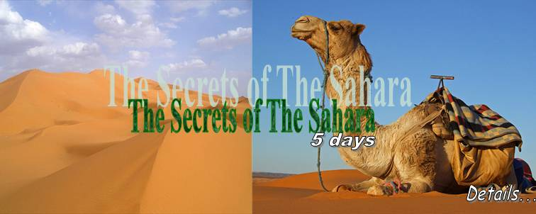 The Secrets of The Sahara